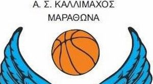 Μπάσκετ Γυναικών: Ομάδα της ΕΣΚΑ ανέβηκε κατηγορία με 19 μηδενισμούς!
