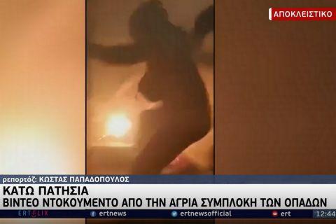 Βίντεο ντοκουμέντο από την επίθεση στο σύνδεσμο του Παναθηναϊκού