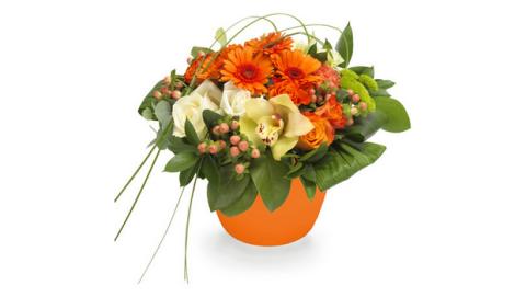 Γιορτή της μητέρας, χαρίστε τους χαμόγελα με ένα λουλούδι