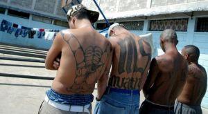 Πώς η πυγμαχία κρατάει τους νέους της Κολομβίας μακριά από συμμορίες