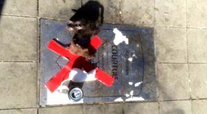 Οπαδοί της Ατλέτικο έριξαν ψεύτικα ποντίκια στην τιμητική πλάκα του Κουρτουά