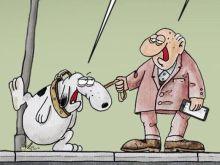 To σκίτσο του Αρκά για τις μετακινήσεις των τετράποδων εν μέσω lockdown